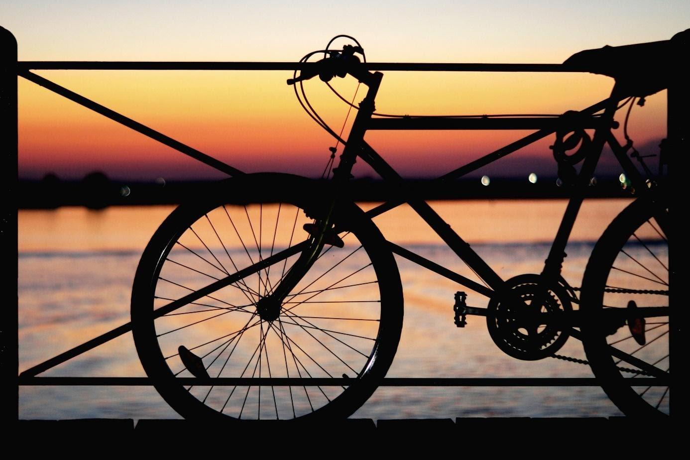 Een goede e bike voor alledaags gebruik